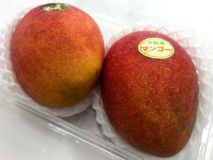 takadanobaba chintai mango