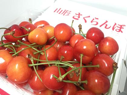 takadanobaba chintai cherry